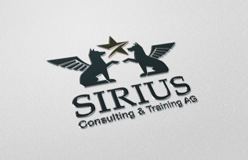 SIRIUS Consulting AG, Hattersheim